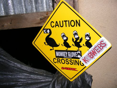 Caution Kobwebs