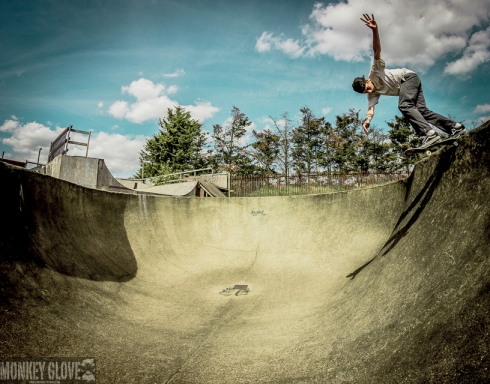 Flea Bag back tail rom p Bowl